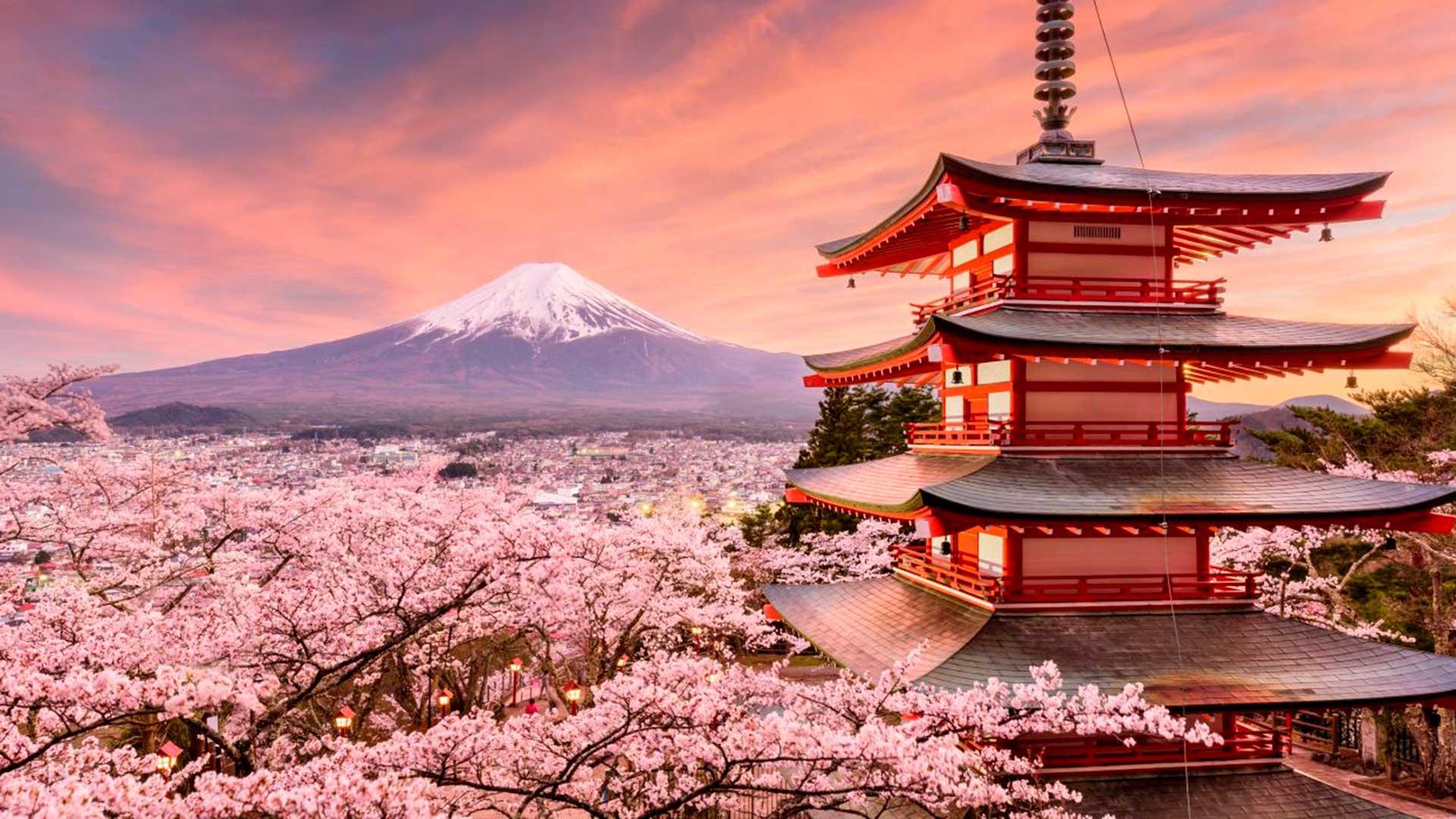 Corea & Japón