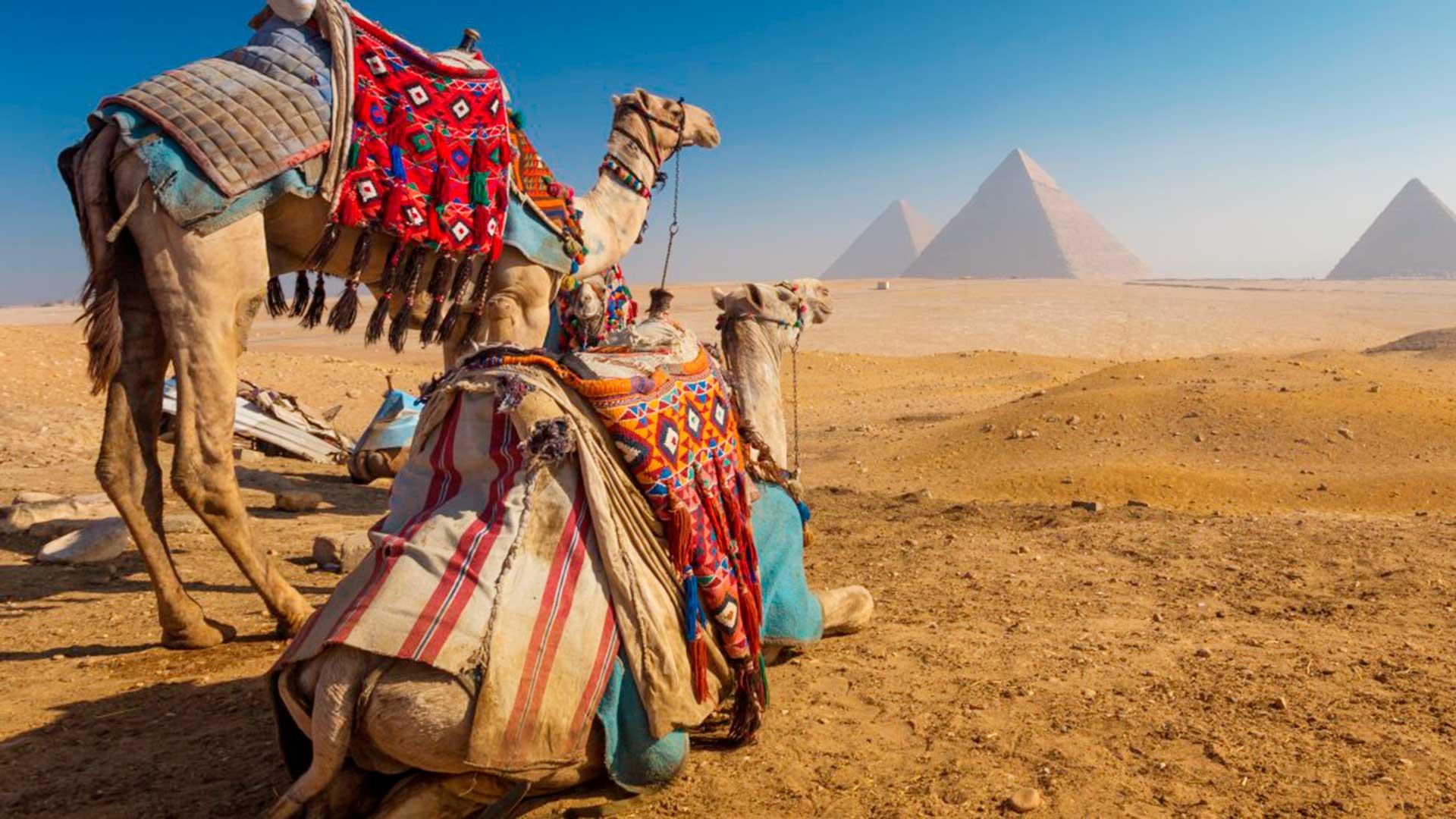 Egipto, Jordania & Israel